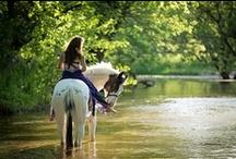 Horse Senior Shot ideas / Senior photography shoot ideas to include a horse