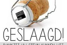 Vernieuwing  Brasserie en Winkel 2015 / d.m.v. crowdfunding Brasserie en bakkerij van Toor een nieuwe uitstraling kunnen geven.