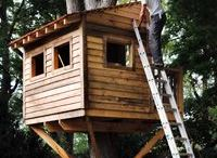 Tree House / Plans to build a tree house
