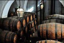 Vinos / Guias de vinos, todo lo que necesitas saber sobre lo vinos