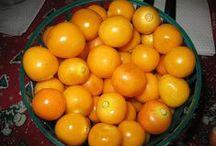 Fruta / Noticias para mejorar tú salud, consumo saludable de alimentos