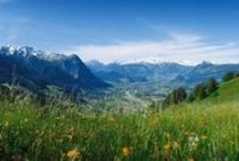 Alpine / I know, some of them are not really Alps...it's about mountains and grassy meadows and a bit of snow!