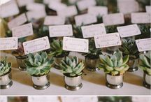 Favors / Wedding favor shoppable pins and inspiration.