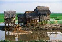 Good Houses - Asia