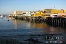 Monterey Peninsula / My home territory.