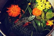 Herbal Magick and Natural Healing / by Ashaela Shiri