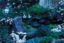 Green Witch's Garden