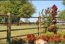 Priefert Ponderosa Fence / Priefert fence offers you the convenience of no-weld, all-steel fencing that is easy to install and easy to maintain. All steel components are powder coated to provide a beautiful and durable finish that does not require re-painting down the road.