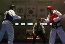 Martial Arts / Anything related to martial arts, weapons, and armour.   / by Tori