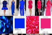 2014 Fashionistas