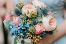 Wedding - The Bouquet