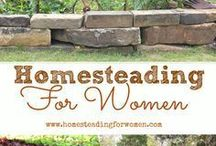 Homesteading / A board for anyone who wants to raise their own meat, care for chickens, grow a kitchen garden, dry herbs, and learn many other homesteading skills
