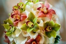 Flowers / by Natalie Mason