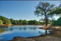 Limpopo / Pietersburg