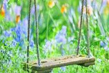 Garden Benches & Swings
