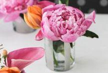 Bouquets and flowers / Flores, Ramos de flores, bouquets.