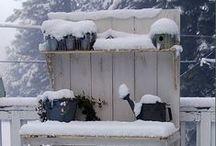 Winter...Garden shed & Potting bench.