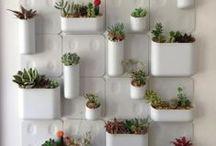 Vertically Gardened