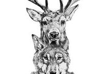 Dreamcatchers, wolves, and everything Native American