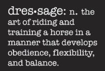 Dressage / Pictures, ideas, illustrations, tips and tricks for dressage