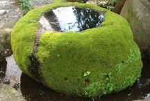 Moss and other nature materials