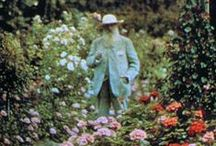 Claude Monet`s garden