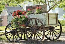 Old tractors and wagons