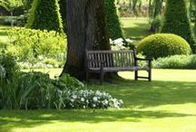 Benches, swings and seats in the garden
