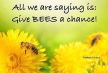 Bless the Bees! / What can YOU do to save our honeybees? 1) Buy organic, local, seasonal food grown in ecological farms; and 2) Plant a garden with diverse, native vegetation that is free of chemical pesticides. You can grow bee-friendly flowers or make a small home for wild bees.