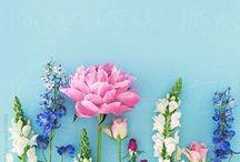 Art dans les Fleurs