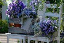 Puutarhaunelmia / Kuvia puutarhoista joissa haluaisin olla ja nauttia, oikeaa tunnelmaa, väriharmoniaa, toteutusideoita. Sisäinen puutarhani...jos pienenen palan tästä saisin.