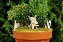 Tündérkertek - Fairy garden / Fairy garden ideas - Tündérkert ötletek