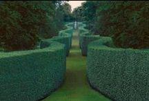 Landscape architecture history