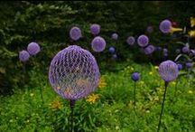 Da Garden / Inspirational and Practical ideas for Magnolia Cottage