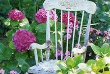 garden-exteriors
