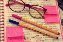 Estudos diário