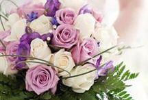 Rose Bouquet / Rose Bouquets
