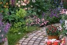 Wandaful Lawn & Garden / Wonderful ideas on how to decorate your garden and care for your lawn.