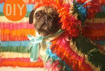 DIY Fun / by Mary Elizabeth Wheeler