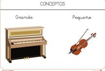 Fichas de conceptos