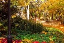 Autumn / Beautiful Autumn images