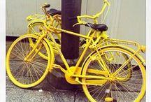 Yellow / #Yellow #ColourInspiration #Monochromatic / by Risma Viljoen