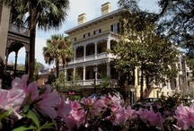 Sweet Southern Charm / PLEASE pin with RESPECT!!  Or YOU will be BLOCKED!!  Thank You! / by Darlene Sojka