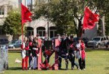 Storm The Citadel! / Trebuchet Competitions  / by The Citadel