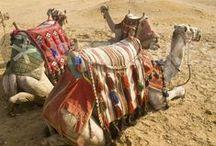 Travel - Footsteps Across The Globe