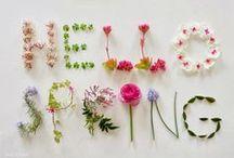 Spring   ✿  ✿  ✿  ✿  ✿