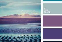 Barvy a schémata