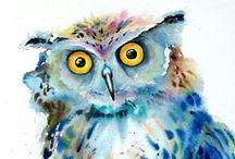 Owls / In honour of Boobook Editing's namesake.