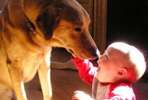Dog loves you. / I wanna be together always