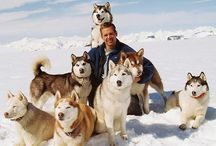 #Eight below#  <3 <3 <3 / This is my favourite film... :) i <3 it!!!  ;D